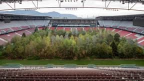 A Football Stadium In Austria Has Been Turned Into A Forest