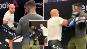 Leaked Footage Of Ciryl Gane And Francis Ngannou Sparring Leaves UFC Fans Shocked