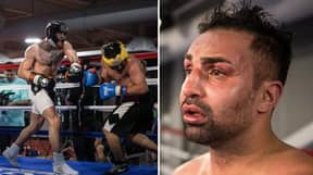 Paulie Malignaggi Wants 'Winner Takes All' Boxing Bout With Conor McGregor