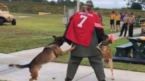 US Navy SEALs Investigating Colin Kaepernick K-9 Training Stunt