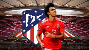 Benifca Confirm They Have Received €126 Million Offer From Atletico Madrid For Joao Felix