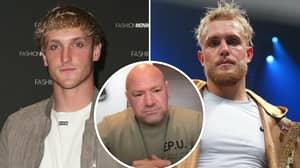 UFC President Dana White Drops Scathing Attack On Brothers Jake And Logan Paul