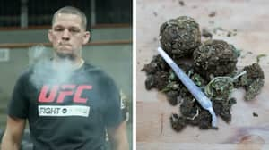 Study Finds Almost Half Of All MMA Fighters Use Marijuana