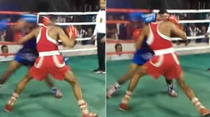 Indian Boxing Fight Ends In Amazing 'Double Knockout'