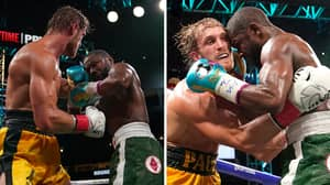 The Final Punch Stats For Floyd Mayweather Vs. Logan Paul Revealed