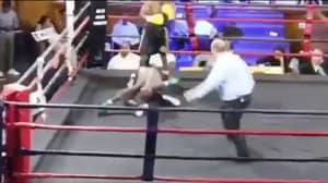 Boxer's Body Literally Folds In Half After Devastating Knockout