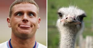 Throwback To The Time Paul Gascoigne Brought An Ostrich To Tottenham Training