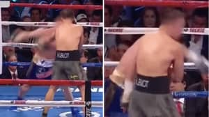Remembering When GGG Casually Walked Through A 'Canelo' Bomb