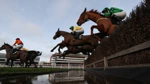 Saturday's TV Preview Pack From Racing Post