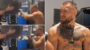 Conor McGregor Releases New Training Footage And Fans Are Genuinely Concerned He's Made A Mistake