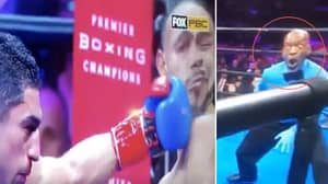 Boxing Ref Steve Willis Goes Viral Again For Another Priceless Reaction To Punch