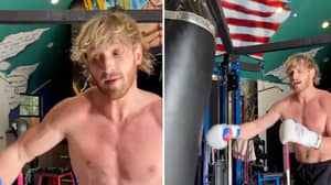 Floyd Mayweather Claims Logan Paul Is 'More Famous Than Every Other Boxer In The World'