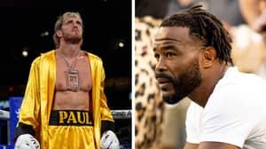 UFC Legend Rashad Evans Challenges Logan Paul To A Boxing Match