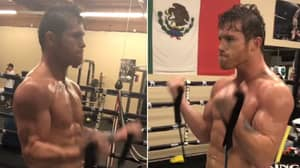 'Canelo' Is In Ridiculous Physical Shape Ahead Of Gennady Golovkin Rematch