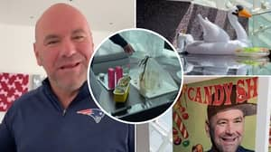 Dana White Gives A Tour Of His Fight Island Hotel Room And It Looks Incredible