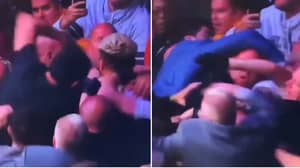 Brand New Footage Of Khabib's Teammate Landing Huge Punch On Conor McGregor's Coach During UFC 229 Brawl