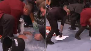Throwback To One Of The Funniest Moments In UFC History
