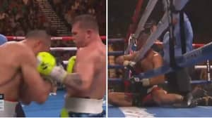 Canelo Destroys Sergey Kovalev To Become A Four-Weight World Champion