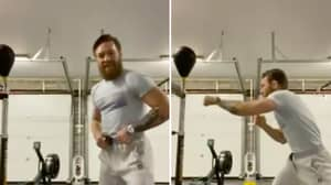Conor McGregor Shouts 'Canelo' As He Shows Off His Boxing Skills
