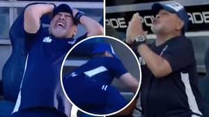 Diego Maradona's Touchline Antics Last Night Were Absolutely Hilarious