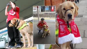 Colin And His Guide Dog Make 440 Mile-Round Journey For Every Hemel Hempstead Game