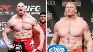 WWE Star Brock Lesnar's Career Earnings From UFC Fights Have Been Revealed
