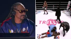Snoop Dogg's Commentary Of Jake Paul Knocking Out Nate Robinson Is Hilarious
