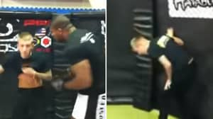 When A Fan Asked Alistair Overeem To Punch Him In The Stomach