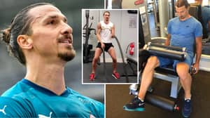 Doctors Want To Perform Research On Zlatan Ibrahimovic After He Retires