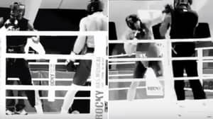 Deontay Wilder Was 'Knocked Out Cold' By Wladimir Klitschko In Sparring