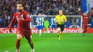 Virgil van Dijk Celebrates Before Mohamed Salah Even Scores As Liverpool Go Through