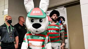 Video Emerges Of Rugby League Fans 'Roughing Up' South Sydney Mascot 'Reggie The Rabbit'