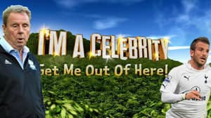 Rafa van der Vaart Pokes Fun At Harry Redknapp Going On 'I'm A Celebrity...Get Me Out Of Here'