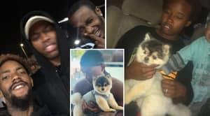 Man Who 'Found And Returned' Daniel Sturridge's Dog Blasts The Footballer On Twitter