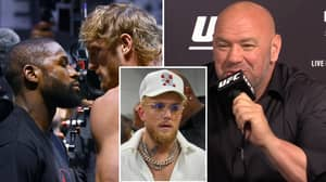 UFC President Dana White Confirms Floyd Mayweather vs Logan Paul PPV Buys After Jake Paul Dig