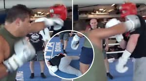 Logan Paul Was Brutally Knocked Out By UFC's Paulo Costa In Sparring Session