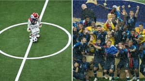 Robot Football Team Could Beat World Cup Winners By 2050