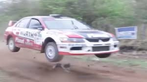 Dog Incredibly Cheats Death By Inches As Rally Car Fails To See Him On Track