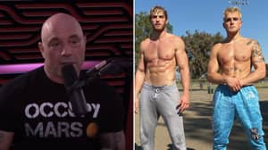 """Joe Rogan Calls Jake & Logan Paul """"Legitimate Tough Guys"""" In Show Of Respect"""