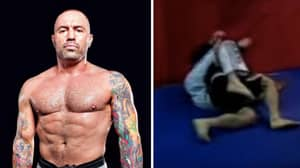 When Joe Rogan Embarrassed An Internet Troll By Making Him Tap Out
