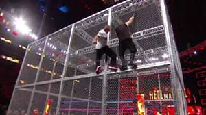 Shane McMahon Jumped Off A Cage Last Night And It Was Intense