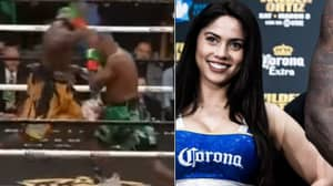 Watch: Corona Girls Brilliantly React To Wilder's Vicious Knockout Against Ortiz