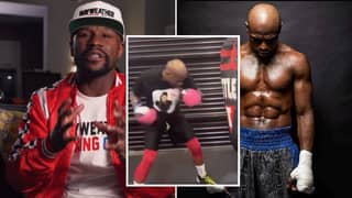 Floyd Mayweather Gives Huge Update On Future Boxing Plans