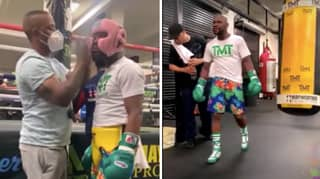 Floyd Mayweather Says Conor McGregor 'Don't Want This' During Training