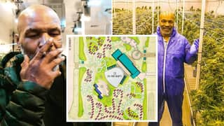 Inside Mike Tyson's Insane Plans To Make A 407-Acre Weed Holiday Resort