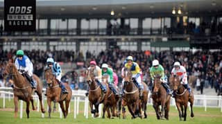 ODDSbible Racing: Irish Grand National Betting Preview