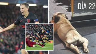 Atletico Madrid's Marcos Llorente Trolls Liverpool With The Name Of His New Dog