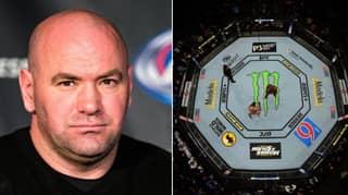 Bellator Star 'Willing To Bet Dana White '$1 Million' He Would Beat UFC Champions