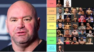 UFC And MMA Fighters Ranked From 'GOAT' To 'Not A Fighter'