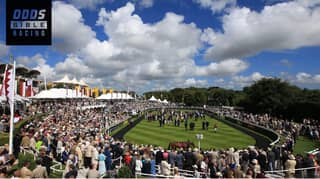 ODDSbible Racing: Glorious Goodwood Day Two Betting Preview